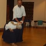 Aikido Performance