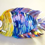 CD fishes