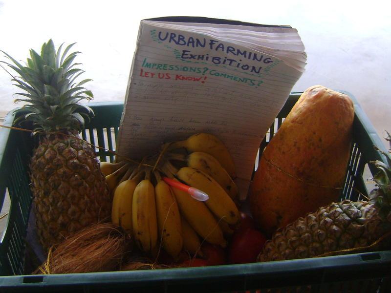 Photographer:Zala | produce of urban farming at Town Hall complex