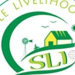 SLI celebrating 1 year of existence