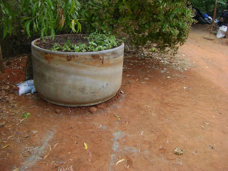 Photographer:Renu | Batteries in flower pot