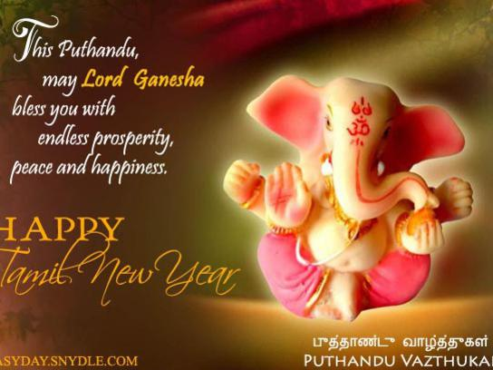Photographer:web | Happy Tamil New Year