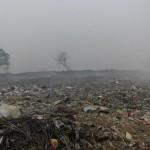 Karuvadikuppam municipal PY dump site  some years back