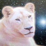 Over The Sun - white lioness