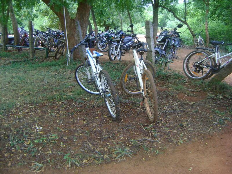 Photographer:Hannah | cycles