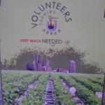 AV Urban Farming needs volunteers