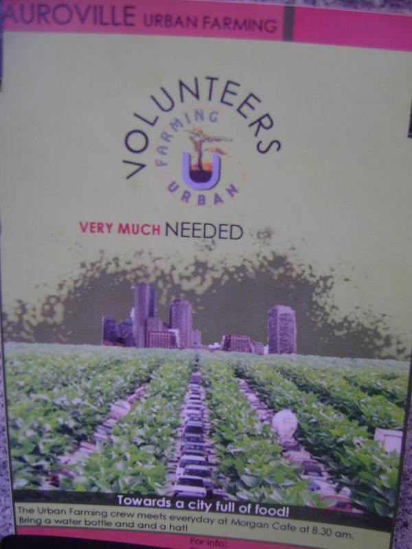 Photographer:web | AV Urban Farming needs volunteers