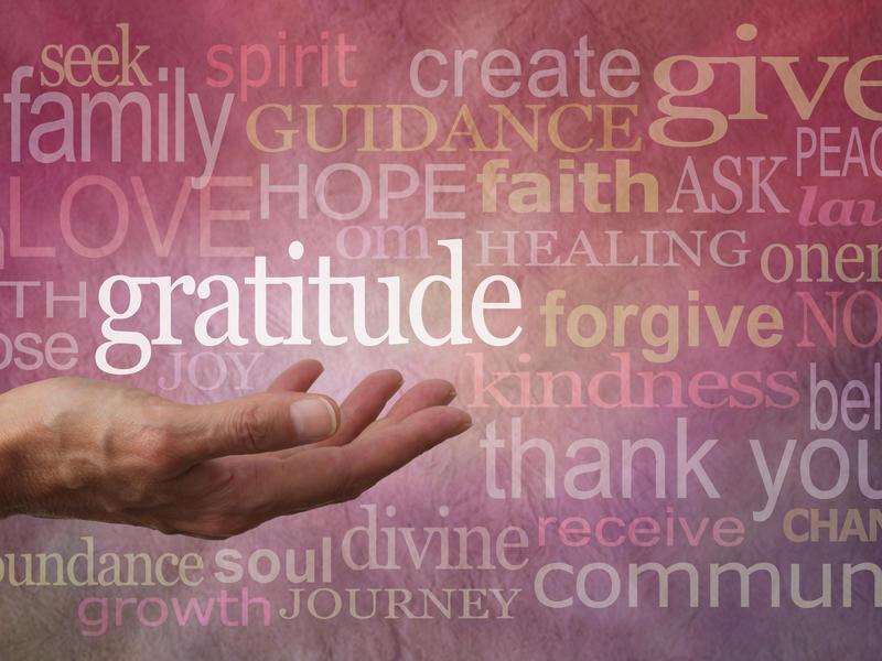 Photographer:web | Gratitude