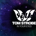 Tom Storbe