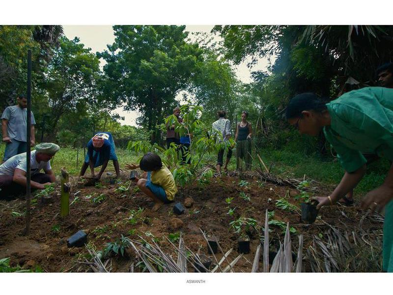Photographer:web | permaculture workshop
