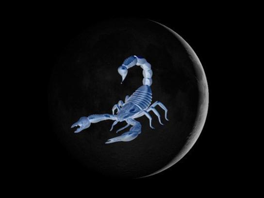 Photographer:web | New Moon on 30th in Scorpio