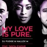 DJ Fudge, Hallex ft Tasita D'Mour - My Love is Pure