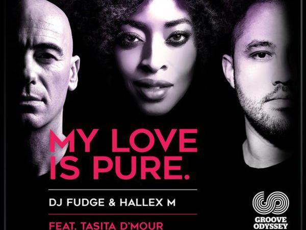 Photographer:web | DJ Fudge, Hallex ft Tasita D'Mour - My Love is Pure