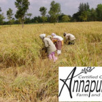 Annapurna Farm newsletter