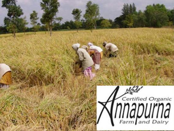 Photographer:web | Annapurna Farm newsletter
