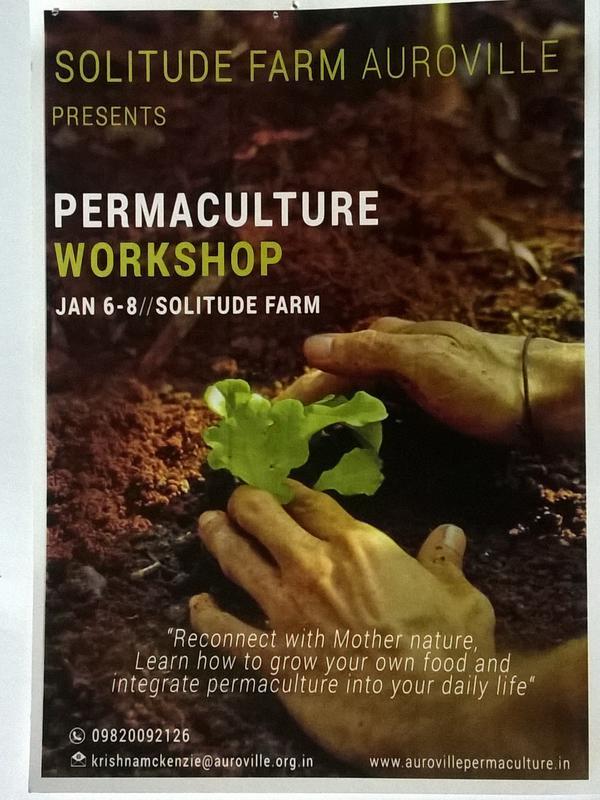 Photographer:web | Solitude - permaculture