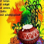 <b>Collective intelligence, Pongal</b>