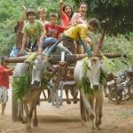 Pongal bull cart with AV kids