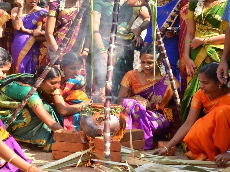 Photographer:web | women celebrating  Pongal