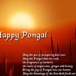 <b>Pongal, CAT 07, Volunteers</b>