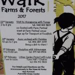 Sunday walk in Farms