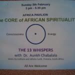 <b>CAT01, Frisbee, African Spirit</b>
