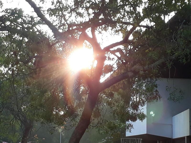 Photographer:Barbara | morning light