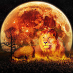full moon and eclipse on 10/ 11th in Leo