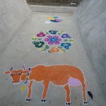 A tradition of culture, a cow picture in kolam art