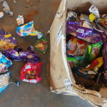 ECOSERVICE: the waste which cannot be recycled