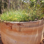 ECOSERVICE: Converted lead batteries into a beautiful plant pot