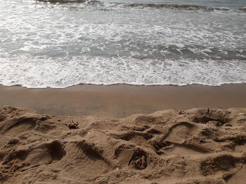 Photographer:web | ocean waves