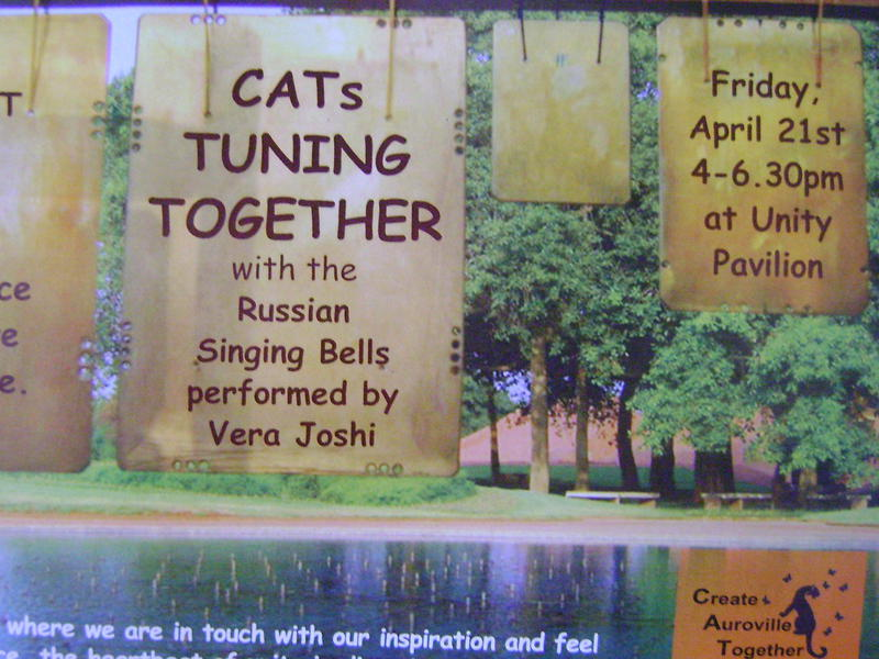 Photographer:web | CATs tuning together on 21st at 4pm at UP