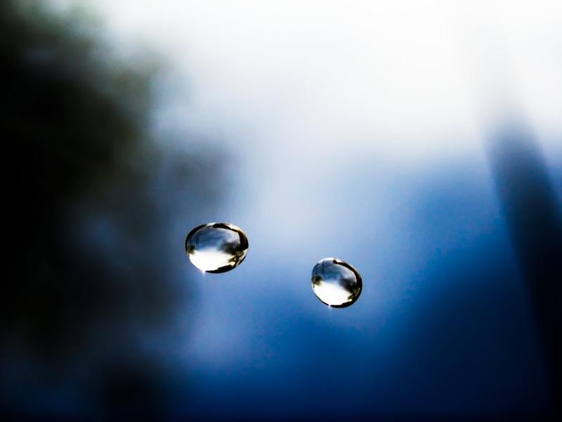 Photographer:web | each drop counts