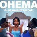 DJ Spinall  Ohema