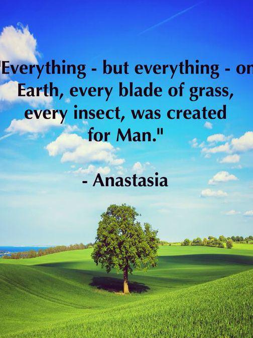 Photographer:Web | Anastasia quote