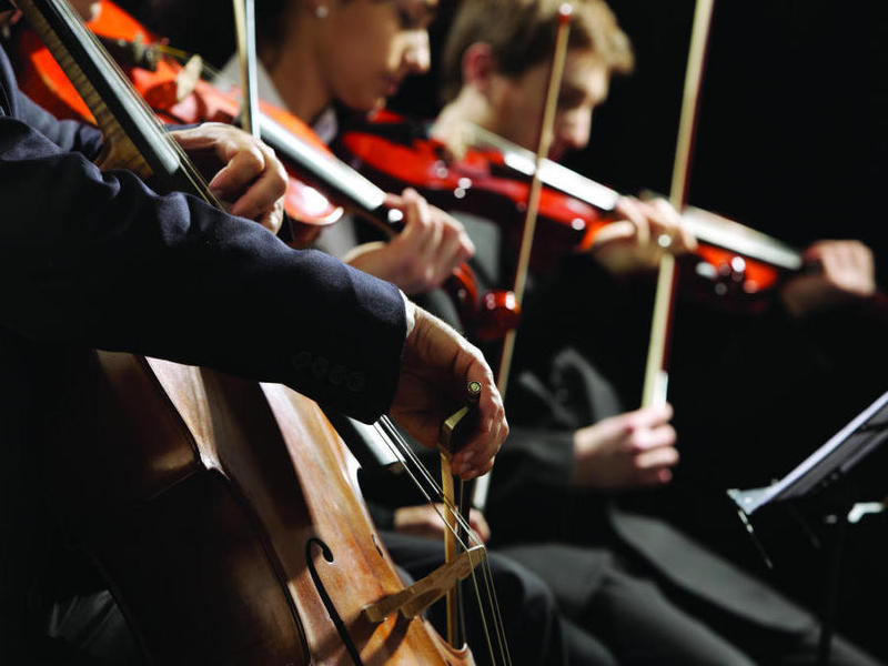 Photographer:web   orchestra , string instruments