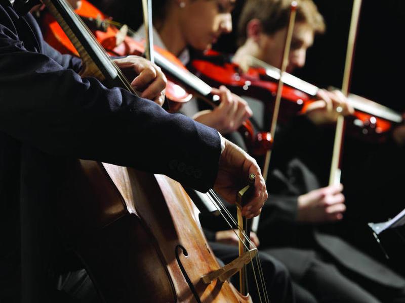 Photographer:web pix   orchestra