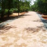 paved road (archive)