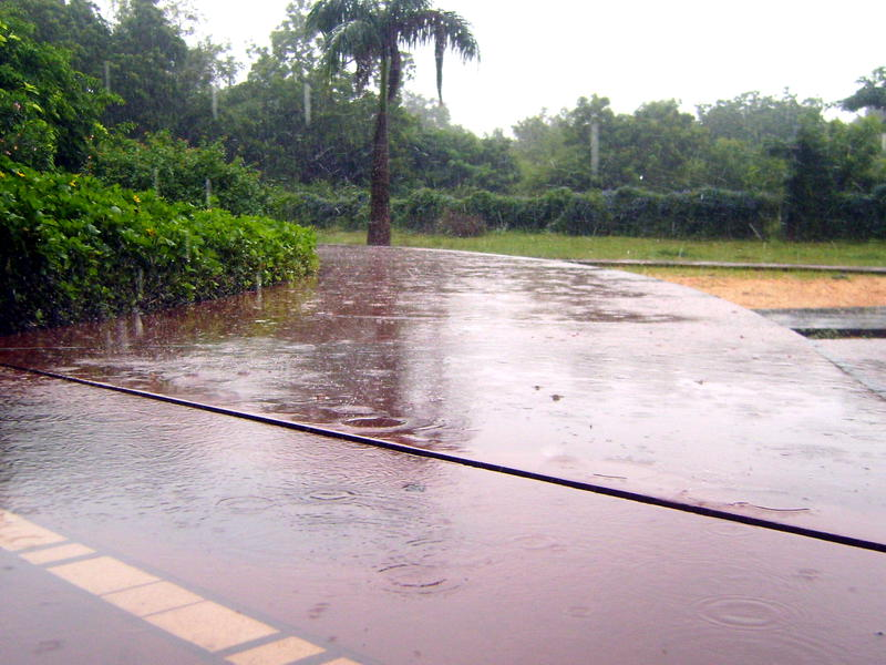 Photographer:Zina | monsoon is here.... showers, thunderstorms, flooding...
