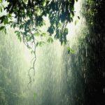 <b>Vox Pop on Monsoon</b>
