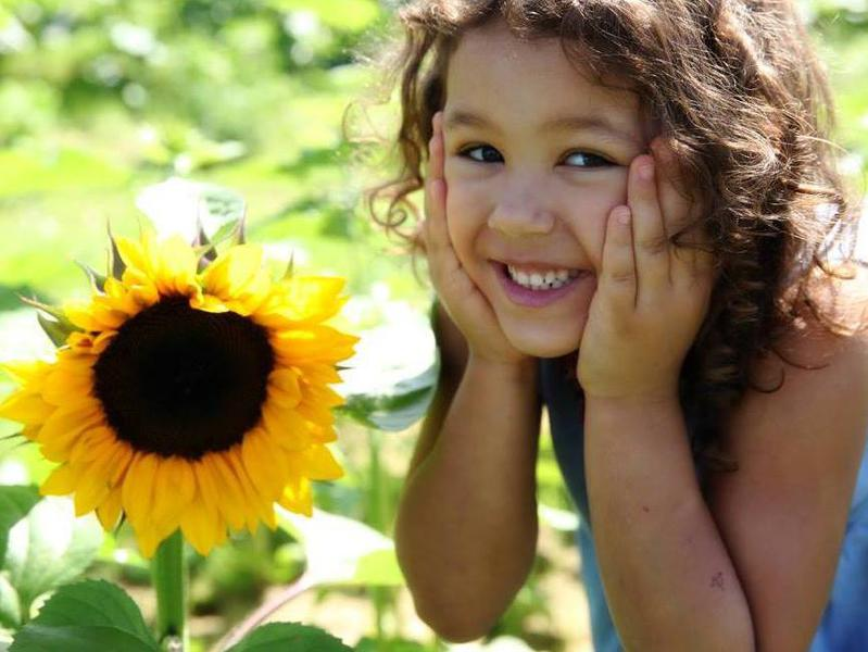 Photographer:web | gril smiling with sunflower