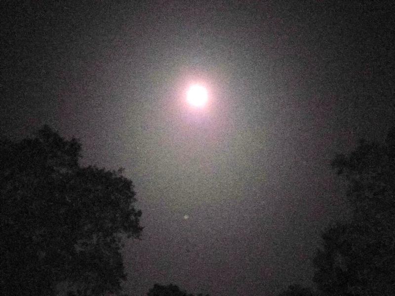 Photographer:Ray | Full moon