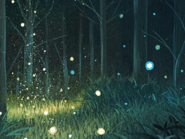 Photographer:web | fireflies