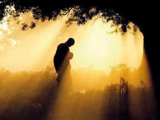 Photographer:web | lgiht, peace, love