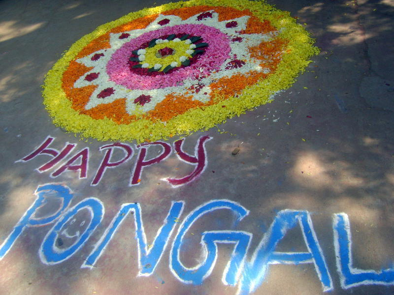 Photographer:Yasna | Happy Pongal from Auroville Bakery Team