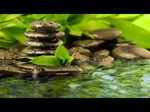 Photographer:web | meditate