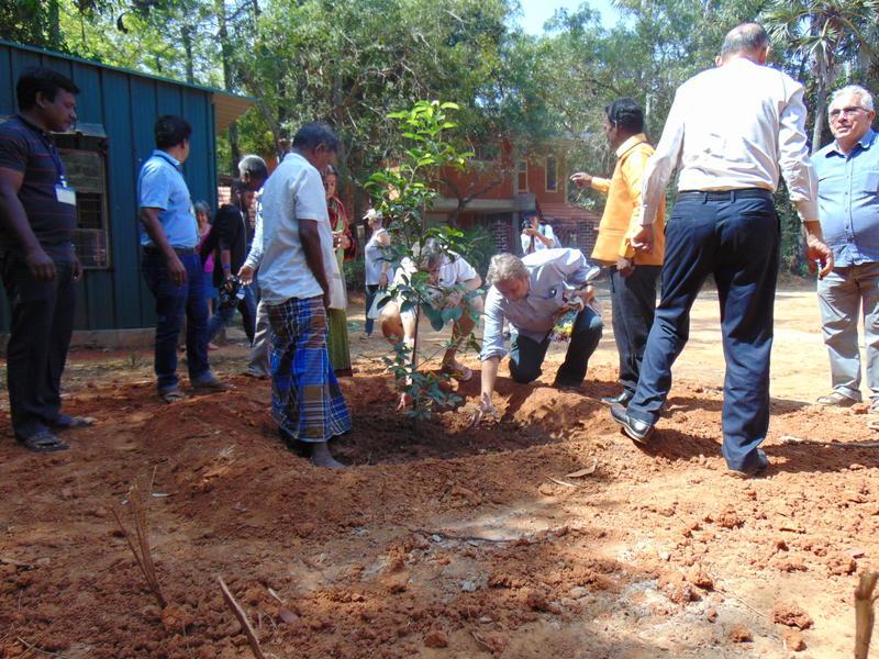 Photographer:Alma | planting Sangam tree