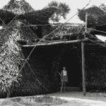 <b>Yoga e spiritualita' ad Auroville dal 1979 ad oggi</b>