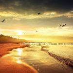 <b>Lost in The Sea</b>